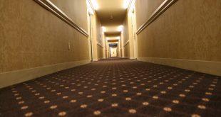 hotel carpet 2 [image 1600x1067 pixels] MWWISTU